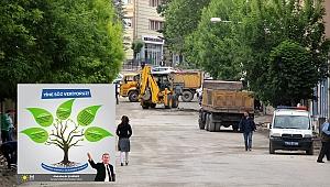 A. Kadir Şahiner'in ağaç sevgisi!