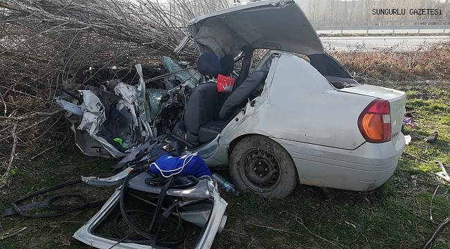 Otomobil ağaca çarptı, anne ve oğlu öldü