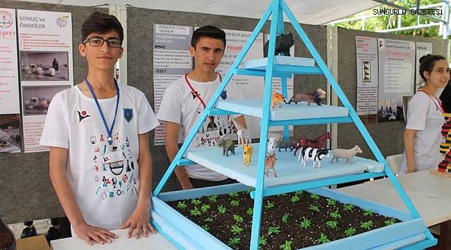 Sungurlu'nun TUBİTAK proje yarışması başarısı