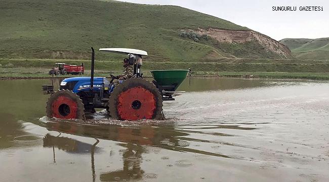 Kula köyünde çeltik ekimine başlandı