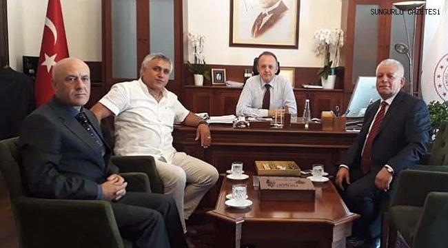Kültür Varlıkları ve Müzeler Genel Müdürlüğüne atandı
